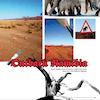 Paramotor magazine cover